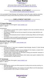 Download It Project Manager Cv Template For Free Tidytemplates