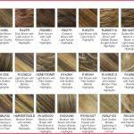 Hair Rinse Color Chart Top Hair Color From Light To Dark Pics Of Hair Color