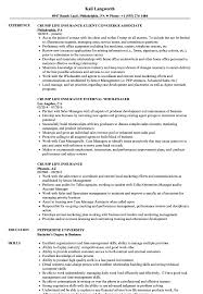 Comfortable Insurance Case Manager Resume Gallery Entry Level
