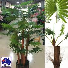 Image is loading 1-6m-Artificial-Plant-Coconut-Tree-Fake-Palm- 1.6m Artificial Plant Coconut Tree Fake Palm Home Office Decor