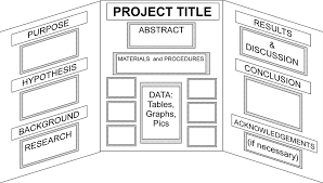 Template For Science Fair Project Template How To Write A Science Fair Project