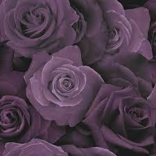 arthouse 675601 austin rose flower