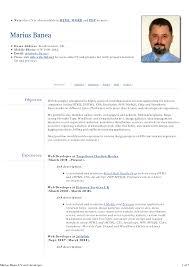 Resume Web Developer Resume