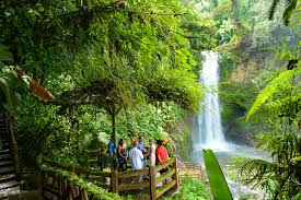 doka coffee tour and la paz waterfall gardens costa rica scuba diving adventure with bill beard scosta rica scuba diving adventure with bill beard s