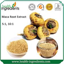 maca root tincture benefits