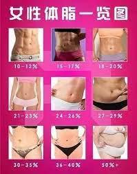 体 脂肪 率 22 女性