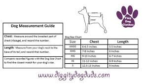 Greendog Size Chart A310 Blue Teal Green Dog Sweaters Xxxs Puppy Teacup Chihuahua Yorkie Maltese Toy Poodle Toy Dog Schnauzer Chin Pomeranian Lowchen Kitten