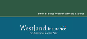 insurance for auto business life home travel more baron insurance