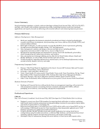 Resume Summary For Accountants Professional Resume Templates
