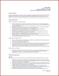 Beautiful Accounting Resume Summary Madiesolution Com