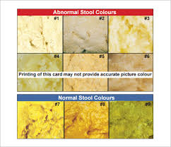 Stool Sample Color Chart Free 7 Sample Stool Color Charts In Pdf