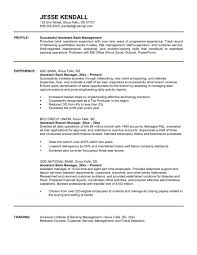 Business Plan For Bank Loan Template Elegant Banking Executive