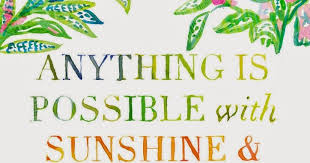 Lilly Pulitzer Quotes Interesting Anything Is Possible With Sunshine And A Little Pink A Flippen Life
