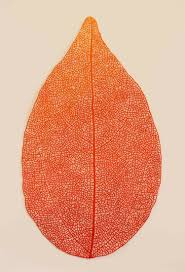 Incredibly Delicate <b>Embroidery</b> Art Inspired by <b>Nature</b>