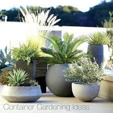 outdoor flower pot arrangements container garden ideas crate and barrel blog large plant outdoor potted plants artificial outside flower pot ideas