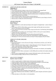 Assistant Apparel Designer Apparel Designer Resume Samples Velvet Jobs