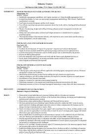 Insurance Manager Resume Insurance Senior Manager Resume Samples Velvet Jobs
