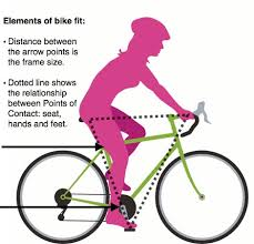Bicycle Fit Considerations Cosmic Bikes