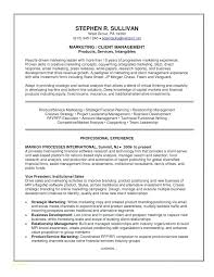Examples Of Executive Resumes New Good Resumes Samples Executive Resumes Samples Example A Good Resume