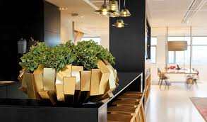 Interior office plants Reception Area Gallery Interior Office Apartment Diet Stylish Range Of Indoor Plants For Offices Phs Greenleaf