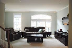 bachelor pad furniture. furniture largesize interior livingroom contemporary family room with black sofa and cool fur rug bachelor pad