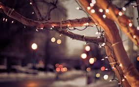 Christmas Lights Christmas Lights Background 1650