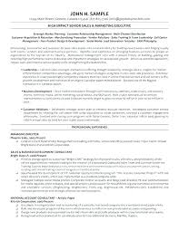 Sales And Marketing Manager Resume Sample International Sales ...