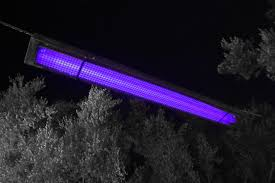 Animal Black Light Burns What Is A Black Light And How Does It Work