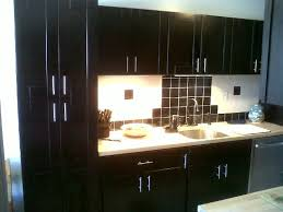 100  Kitchen Cabinet Designs 2013   Kitchen Appealing Ideas Modern Kitchen Cabinets Design 2013