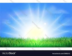 grass field sunrise. Contemporary Field Sunrise Over Green Field Of Grass Vector Image On Grass Field N