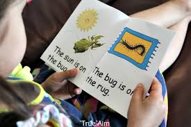 learning about bees activities and free printable 5644565 aks flight info