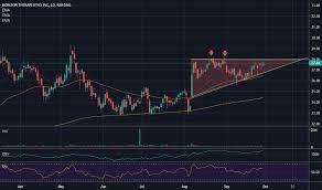 Hznp Stock Price And Chart Nasdaq Hznp Tradingview