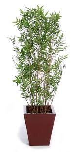 5 Best Tips: <b>Artificial Plants</b> Tips large <b>artificial plants</b> green.Artificial ...