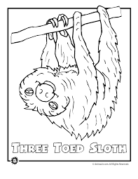 rainforest animals coloring sheets