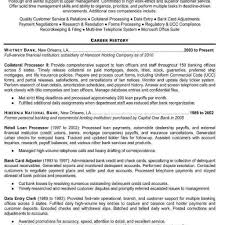 Professional Resume Services Truck Driver Resume Examples Professional  Resume Services Christmas Wallpaper Inside Professional Resume Services Inc  ...
