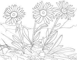 Fleurs 6 Coloriage De Fleurs Coloriages Pour Enfants