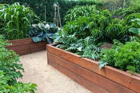 how to set up a vegetable garden bed lush raised garden beds in neat wooden bo