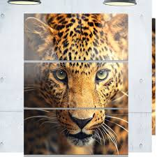 designart x27 leopard face close up x27 animal metal wall on leopard metal wall art with shop designart leopard face close up animal metal wall art free