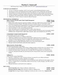 Entry Level Financial Analyst Resume Example Sample Investment