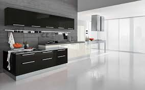 Superb Kitchen Luxurious Modern Designer One Wall Fascinating Idea Ideas