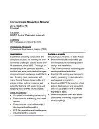 14 Consulting Resume Templates In Pdf Free Premium