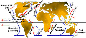 Image result for WARM OCEAN CURRENTS