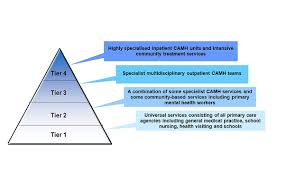 Camh Service Tiers