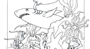 Ocean Scene Coloring Pages Color Of Animals For Johanna Basford Lost