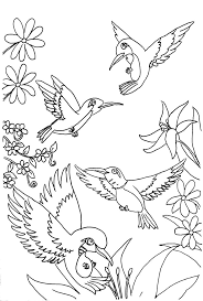 Hummingbirds Coloring Page
