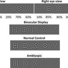 How To Use Sloan Eye Chart Schematic Diagram Of The Dichoptic Eye Chart Letters Were