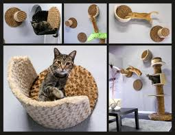 wall mounted cat furniture. Wall Mounted Cat Furniture T