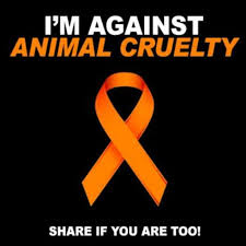 Im Against Animal Cruelty Pictures, Photos, and Images for ...