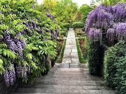 dumbarton oaks gardens washington d c
