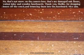 best flooring for pets. Cool Ideas Best Wood Floor For Dogs Flooring Pets Brick Kitchen Inside Hardwood 13